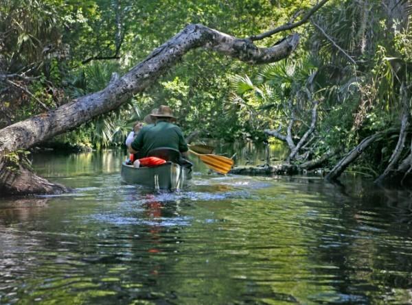 Ponto Orlando O que fazer em Orlando Florida Springs 003