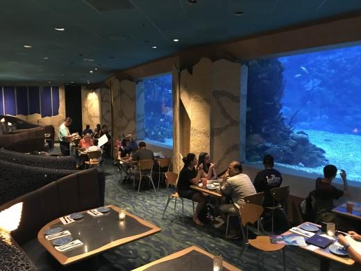 Ponto Orlando Restaurantes na Disney Coral Reef 001